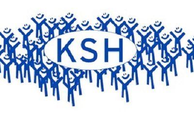 KSH statisztika 2020 – 1021 kérdőív elkészítése a MedMaxban